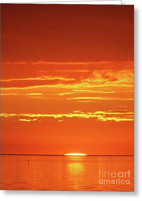 Golden Sunset Greeting Card by D Hackett