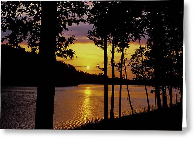 Golden Sunset Greeting Card