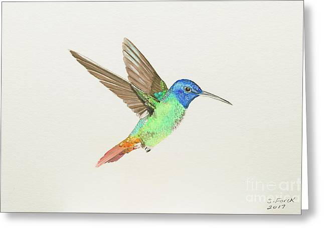 Golden-tailed Sapphire Greeting Card