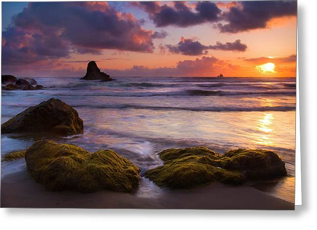 Golden Tides Greeting Card by Mike  Dawson