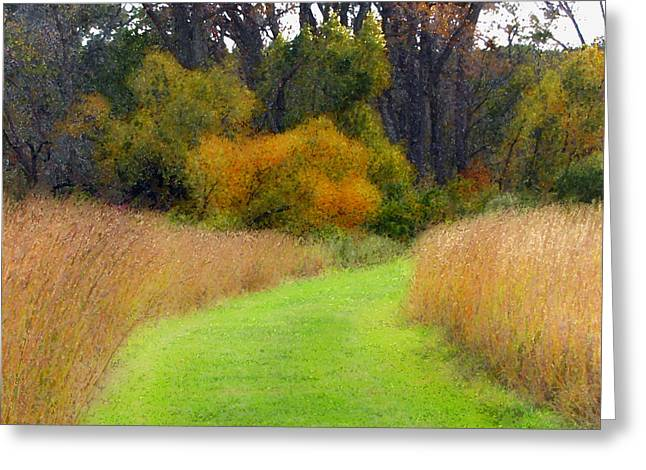 Golden Trail Greeting Card by Cedric Hampton
