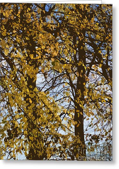 Golden Tree 2 Greeting Card by Carol Lynch