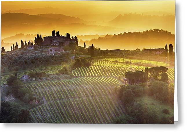 Golden Tuscany Greeting Card by Evgeni Dinev