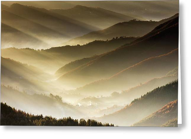 Golden Valley Greeting Card by Evgeni Dinev