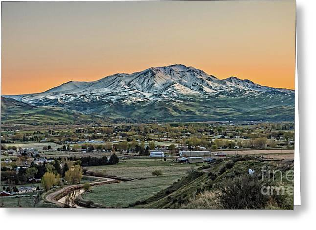 Golden Valley Greeting Card by Robert Bales