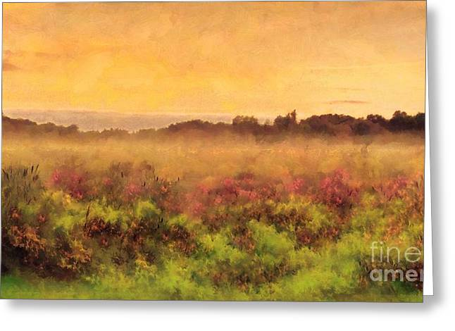Golden Valley Sunrise - Misty Meadows Morning Greeting Card