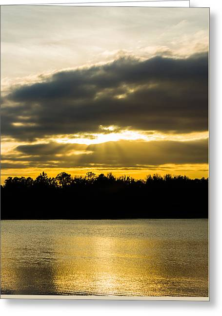 Golden Warmth At Sunset Greeting Card