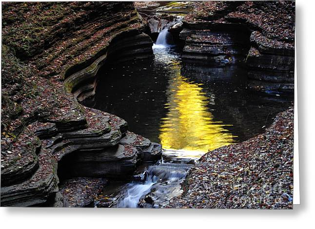 Greeting Card featuring the photograph Golden Water by Vilas Malankar