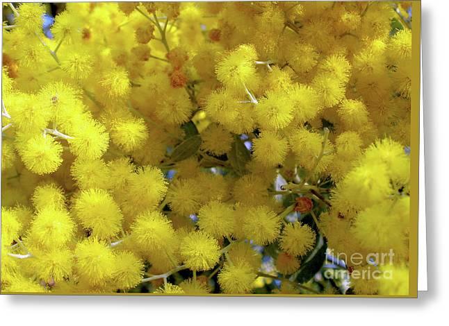 Golden Yellow Greeting Card
