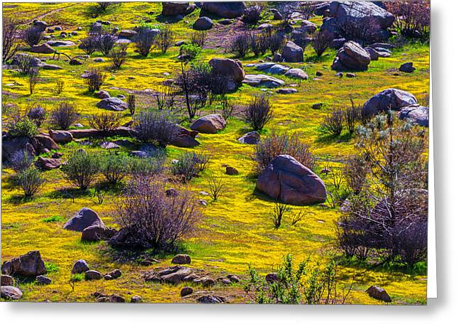 Goldenfield Hillside Greeting Card by Garry Gay