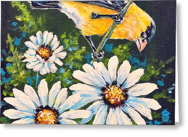 Goldfinch And Daisy Greeting Card by Gail Butler