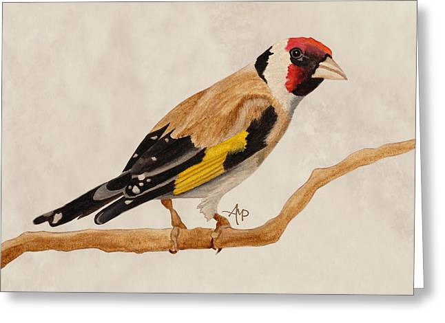 Goldfinch Greeting Card by Angeles M Pomata