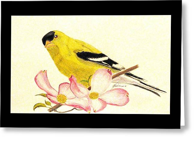 Goldfinch Spring Greeting Card
