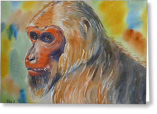 Goldilocks A Stumptail Macaque Greeting Card