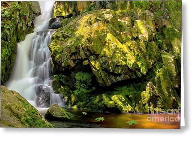 Goldmine Brook Falls Chester Ma Greeting Card