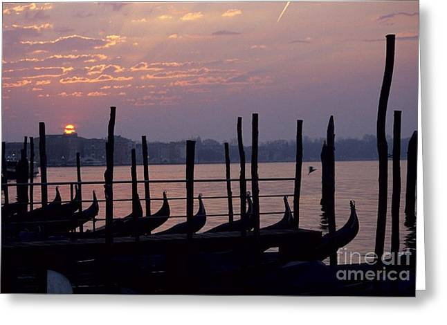 Gondolas In Venice At Sunrise Greeting Card by Michael Henderson