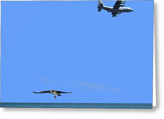 Greeting Card featuring the photograph Herky Bird And Osprey by R B Harper