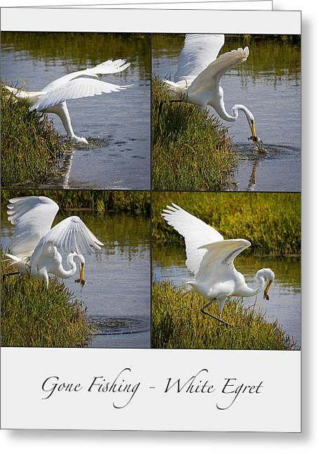 Gone Fishing Collage Greeting Card by Carl Jackson