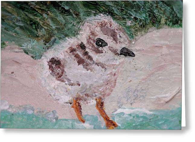 Good Harbor Piping Plover Chick #1 Greeting Card