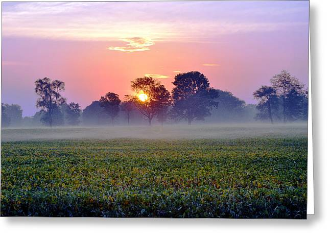 Good Morning Beautiful Greeting Card by Brittany H