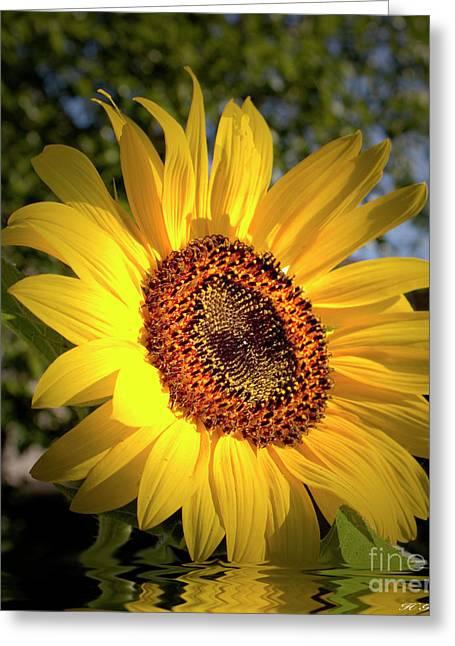Good Morning Sunshine  Greeting Card by Heinz G Mielke