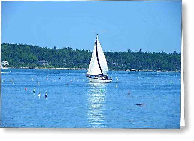 Good Sailing Greeting Card