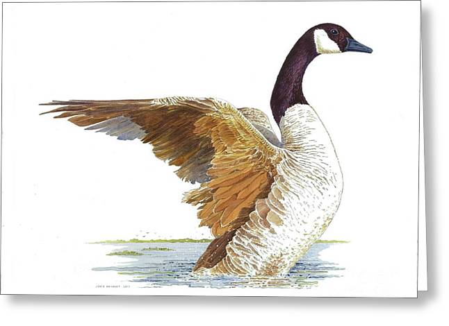 Goose Taking Flight Greeting Card