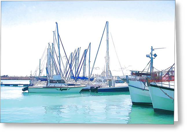 Gordon's Bay Harbour Greeting Card by Jan Hattingh