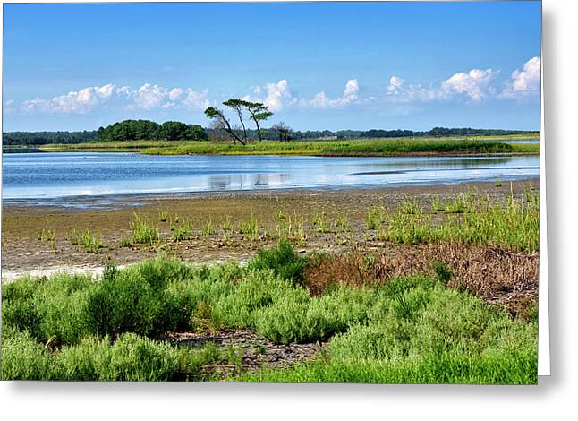 Greeting Card featuring the photograph Gordons Pond At Cape Henlopen State Park - Delaware by Brendan Reals