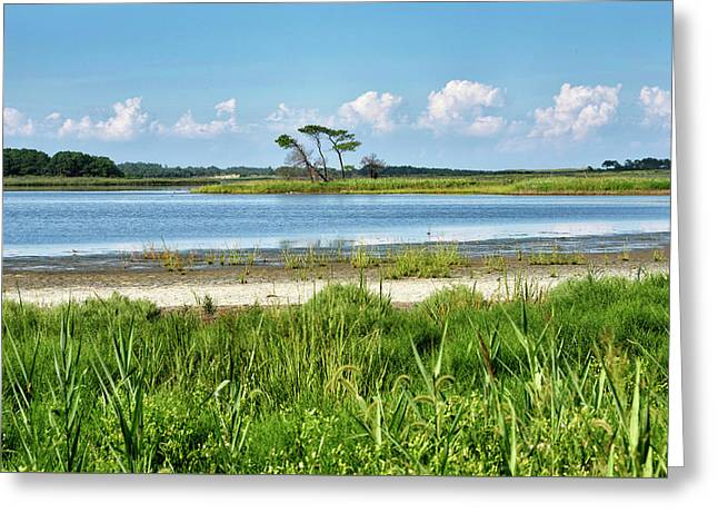 Greeting Card featuring the photograph Gordons Pond - Cape Henlopen State Park - Delaware by Brendan Reals