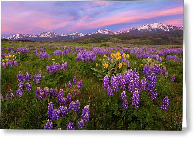 Gore Range Sunrise Greeting Card by Aaron Spong