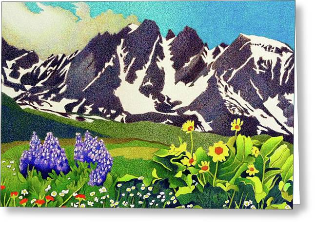 Gore Range Wildflowers Greeting Card