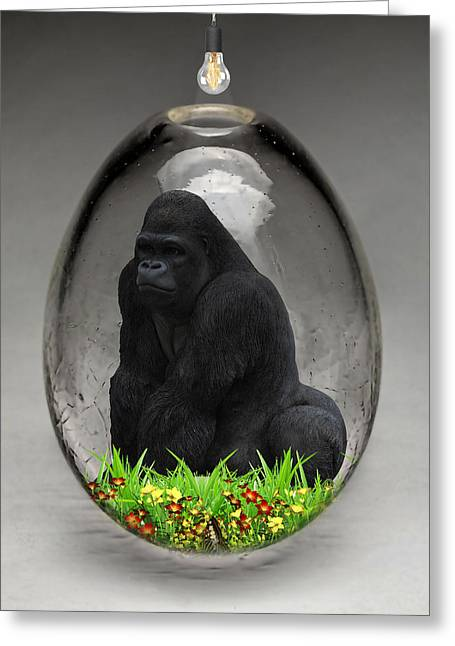 Gorilla Ape Art Greeting Card
