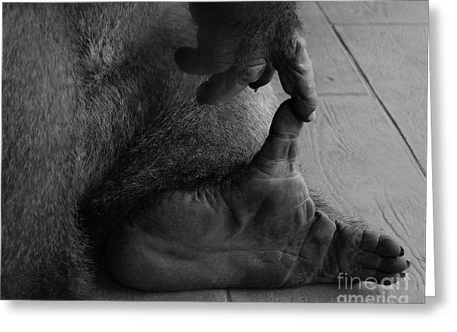 Gorilla Hand And Foot Greeting Card
