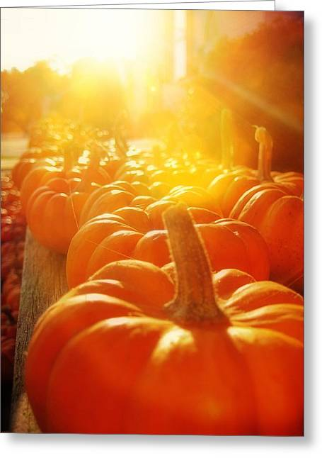 Gourds For Sale Greeting Card by JAMART Photography