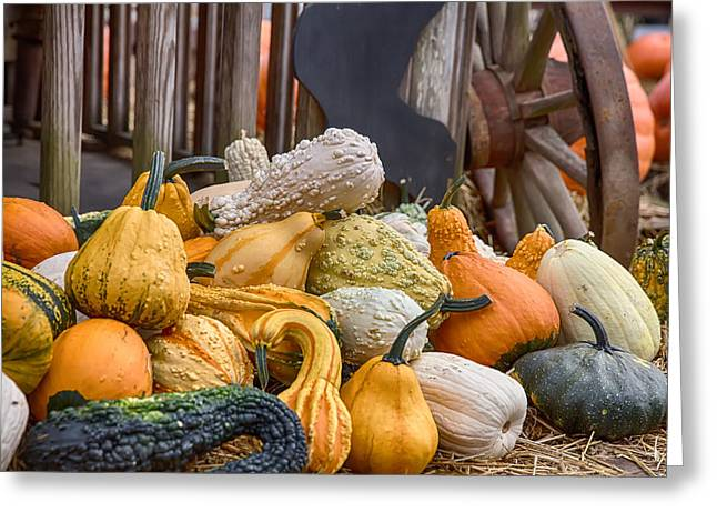 Gourds Of Many Colors Greeting Card