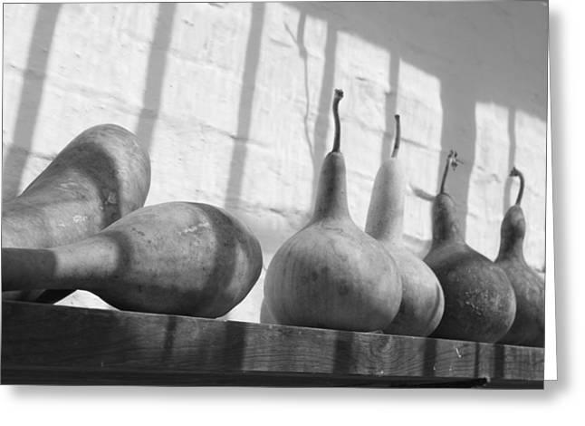 Gourds On A Shelf Greeting Card by Lauri Novak