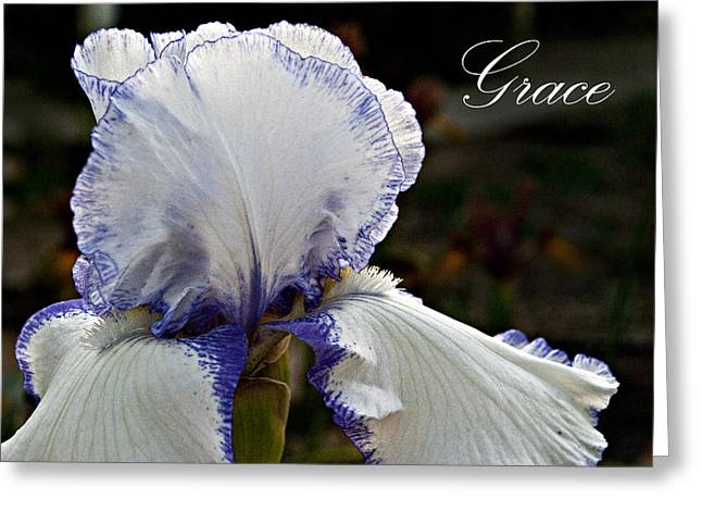 Cmg Design Studios Greeting Cards - Grace Greeting Card by Christopher Gaston