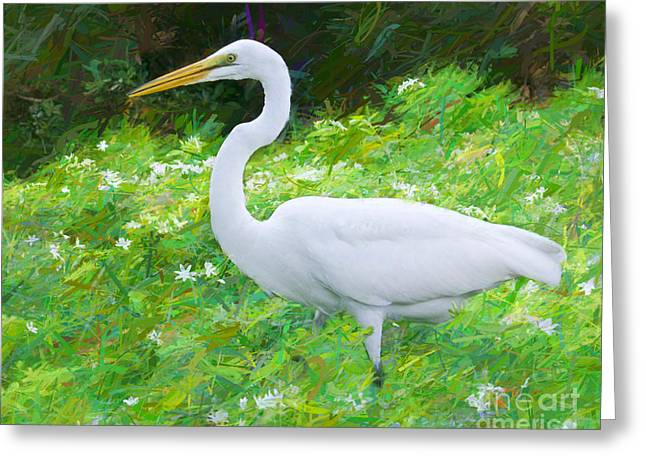 Grace In Nature Greeting Card by Judy Kay