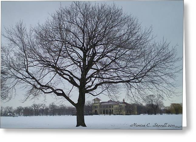 Graceful Tree And Belle Isle Eating Casino In Distance Greeting Card