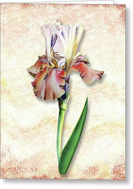 Greeting Card featuring the painting Graceful Watercolor Iris by Irina Sztukowski
