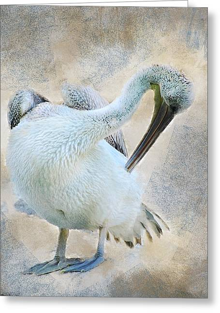 Graciously Pelican Greeting Card
