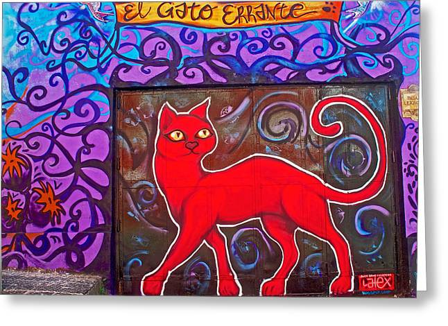 Greeting Card featuring the photograph Graffiti Art Of Red Cat In Valparaiso-chile  by Ruth Hager