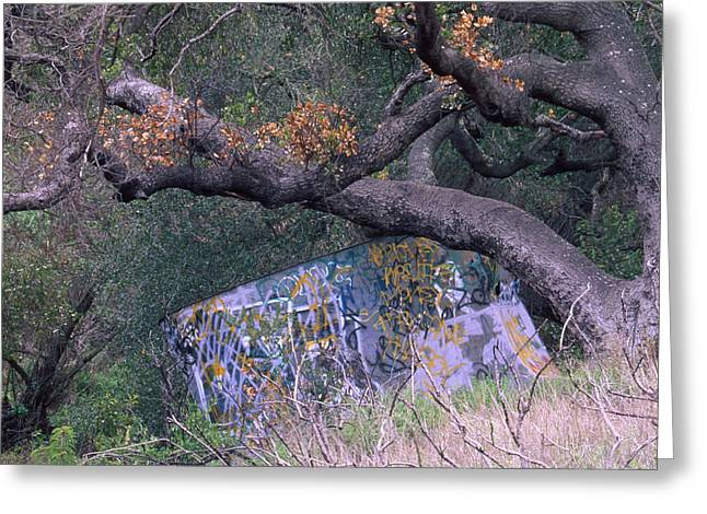 Graffiti Greeting Card by Soli Deo Gloria Wilderness And Wildlife Photography