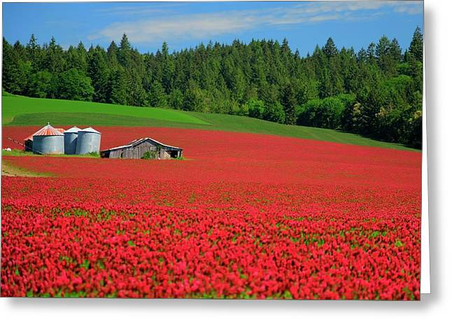 Grain Bins Barn Red Clover Greeting Card