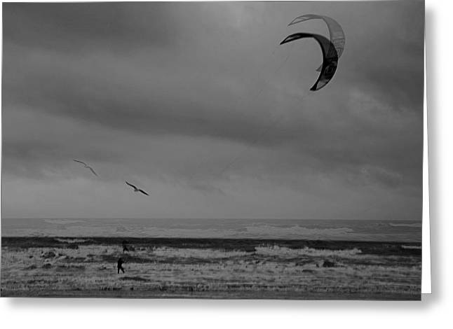 Grainy Wind Surf Greeting Card