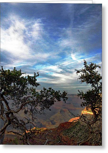 Grand Canyon No. 4 Greeting Card by Sandy Taylor