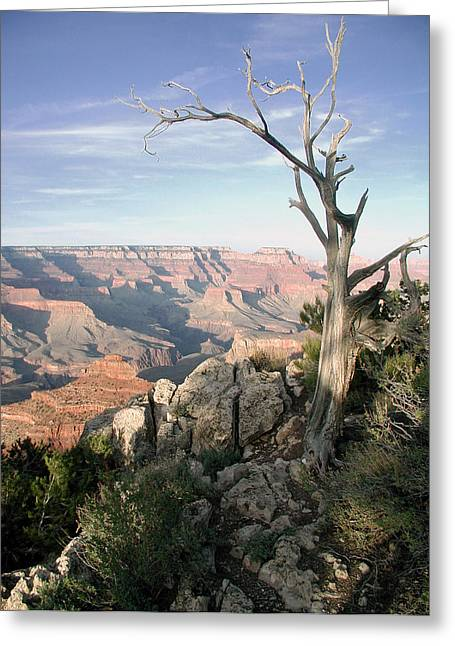 Greeting Card featuring the photograph Grand Canyon 5 by John Norman Stewart