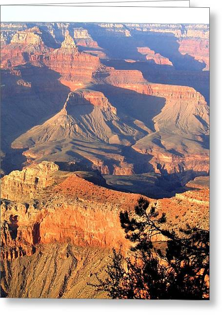 Eye-catching Greeting Cards - Grand Canyon 50 Greeting Card by Will Borden