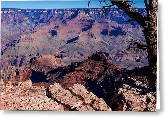 Greeting Card featuring the photograph Grand Canyon 7 by Donna Corless